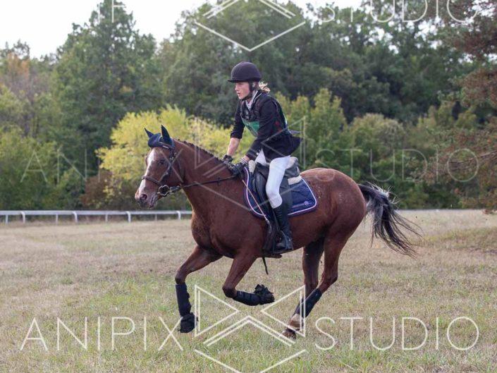 photographe Equestre concours complet saut d'obstacle cross aquitaine