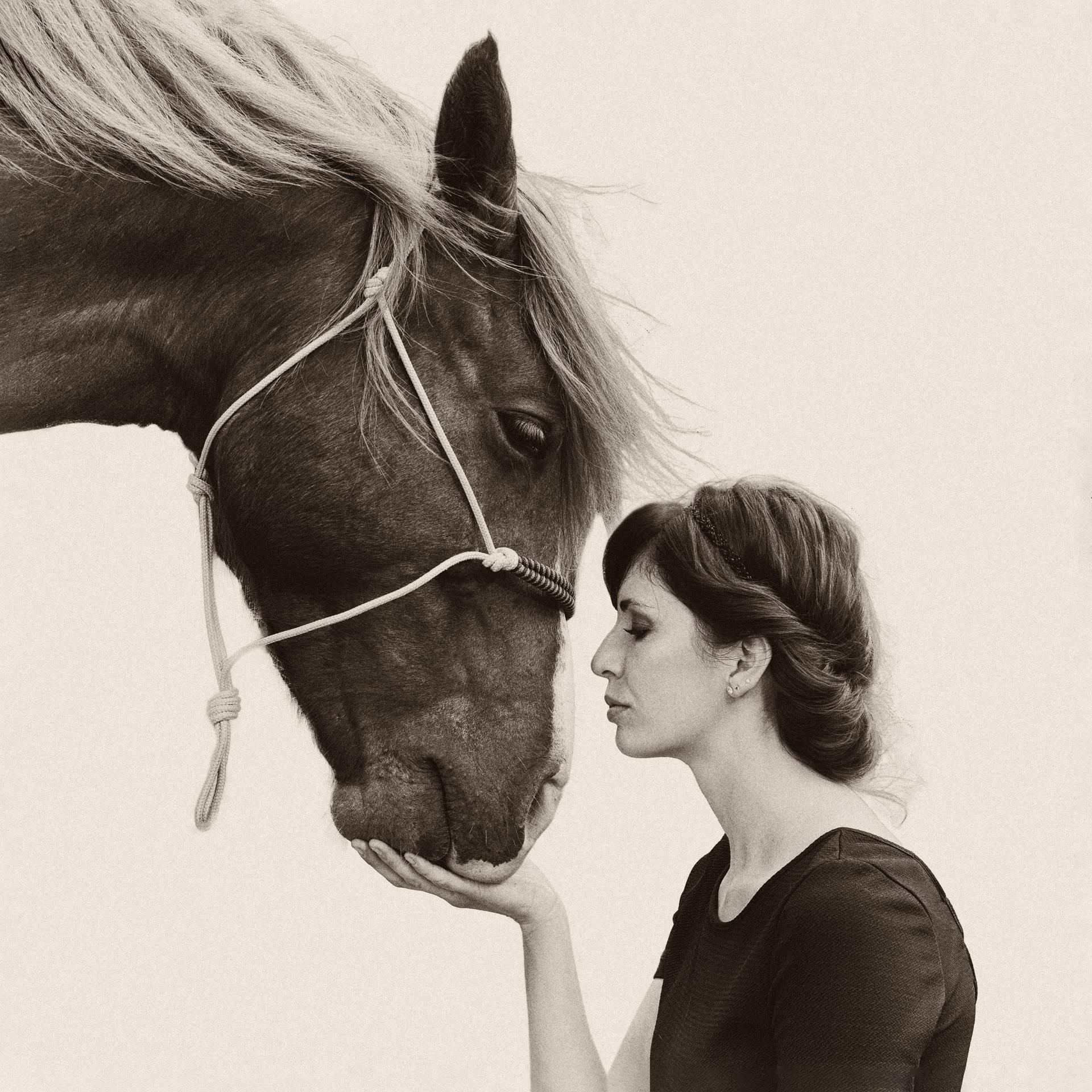 photographie artistique cheval passion